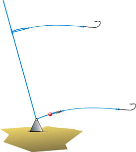 Rigs and Techniques for Successful Bottom Fishing